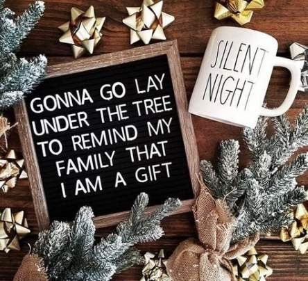 31 Ideas For Funny Christmas Quotes Signs House #funny #house #quotes