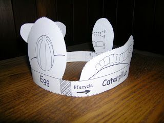 butterfly life cycle craft: crown