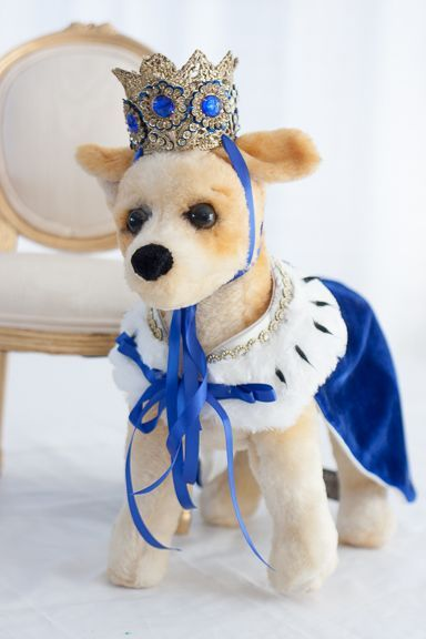 All hail the King! King cape and crown by The Doggie Nanny Boutique. Handmade clothing for that special pet! #thedoggienanny #petclothing #petboutique #dog #dogclothing