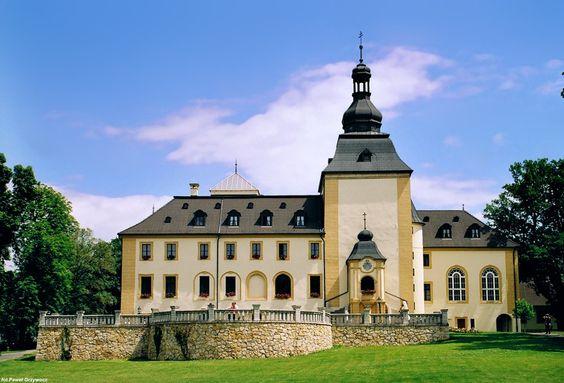 Kamień Śląski pałac — Foto Paweł Grzywocz