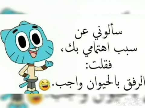 اقوال غامبول Youtube Funny Cartoon Quotes Movie Quotes Funny Funny Picture Jokes