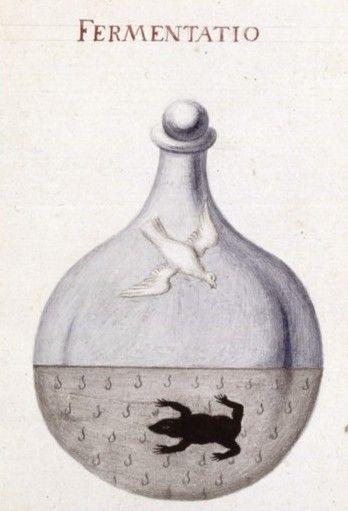 alchemical drawings from Sapientia veterum philosophorum, sive doctrina eorumdem de summa et universali medicina , 18th century - National Library of France