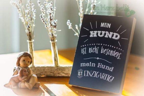 Hunde-Hospiz Uschi Weber: Geschenk-Ideen mit dem doppeltem Freude-Faktor