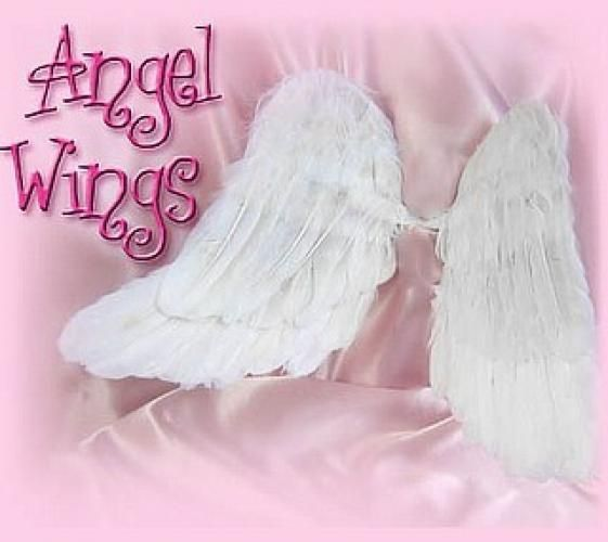 Baby Angel Wings | wings are for you i was your earth angel now you are my star angel ...: