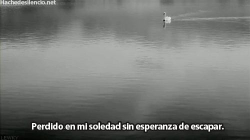 sin esperanza