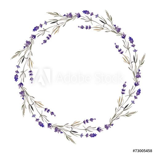 Lavender Wreath Stock Photos Royalty Free Images Vectors Video Wreath Watercolor Wreath Drawing Trendy Flowers