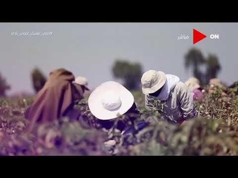 ئون تي في صباح الخير يا مصر أبرز مميزات برنامج فاس لدعم صغار المزارعين Art Movie Posters Poster