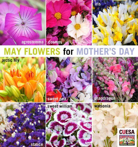 Flower Seasonality Chart for the Bay Area: http://www.cuesa.org/flower-seasonality Flores de boda #ramo #novia #arreglos #centros de mesa
