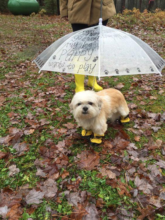 Dog Umbrella. Pet Umbrella. Custom Umbrellas by ButterMakesMeHappy