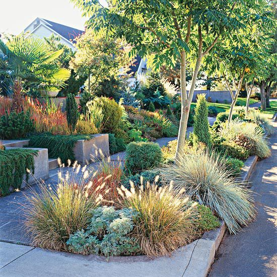 Front yard sidewalk garden ideas gardens front yards for Ornamental grass landscape ideas