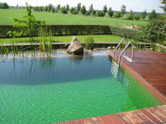 Schwimmteiche naturpools bilder referenzen berlin for Schwimmpool garten