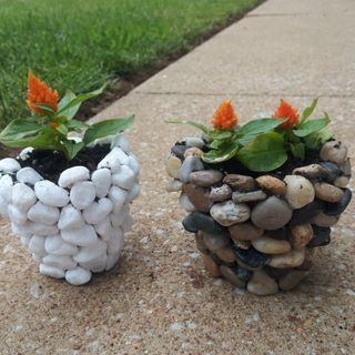 Diy river stone planter gardens will have and glasses for Diy stone projects