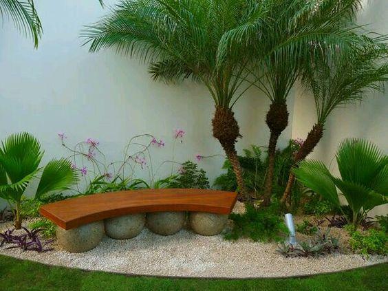 Jardin lleno de piedras blancas palmeras y vanca de - Palmeras para jardines ...