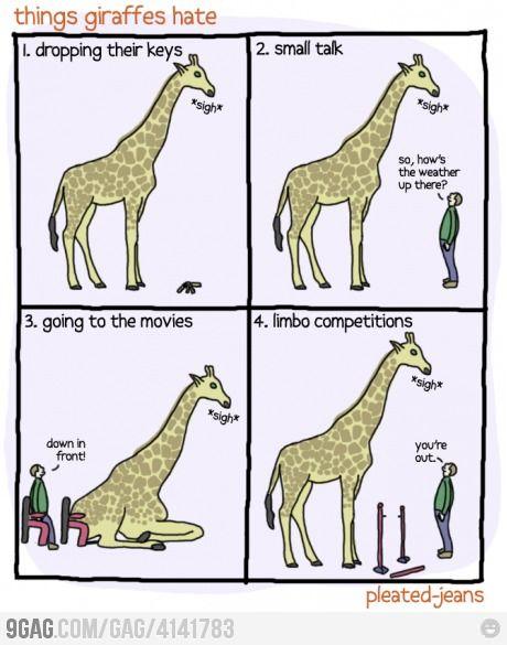 Things giraffes hate...