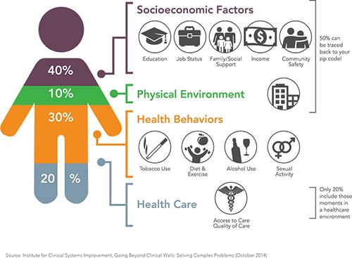 Live Work Play Social Determinants Of Health Healthcare Infographics Exercise Activities