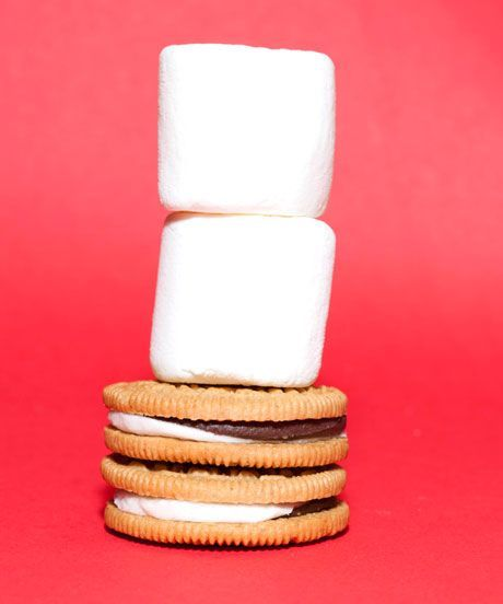 The newest Oreo flavor is going to fulfill all your campfire dreams!!!