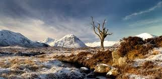 Image result for scottish landscape photography