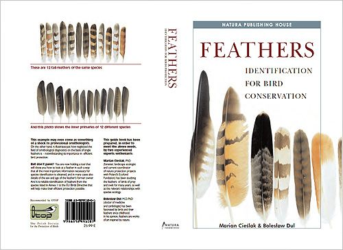 How To Id A Feather Manual Guide