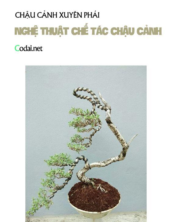 Sách Nghệ thuật Chế Tác Chậu Cảnh Nguyễn Thi Hoa - Uông Truyền Long