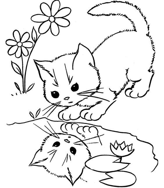 Hayvan Boyama Sayfasi Animal Coloring Pages Panosundaki Pin