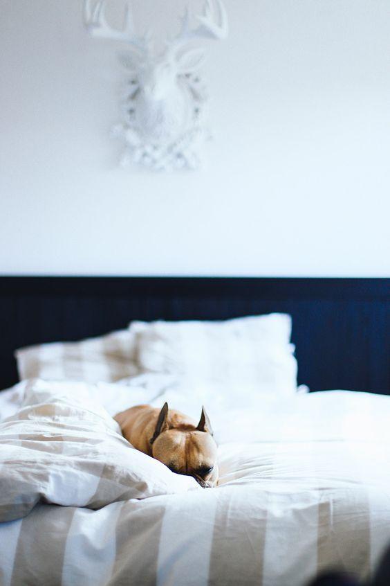 5 tipps für ein gemütliches schlafzimmer | lifestyle, dekoration, Schlafzimmer design