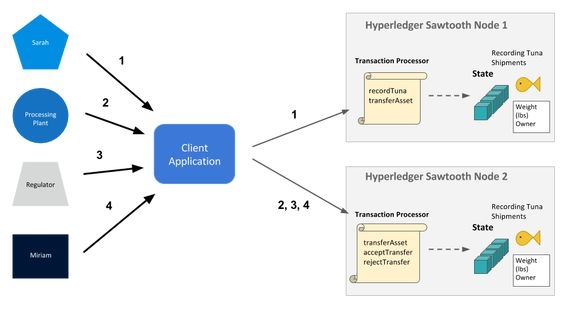 Hyperledger Sawtooth