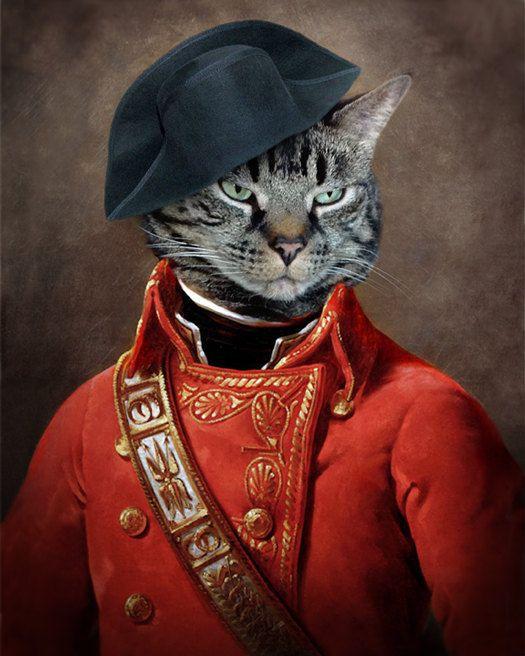 Chat général photographie animaux Pet Portrait chat général canadien vendeur animaux Art Napoléon Cat Print - général Leonard J. Katz