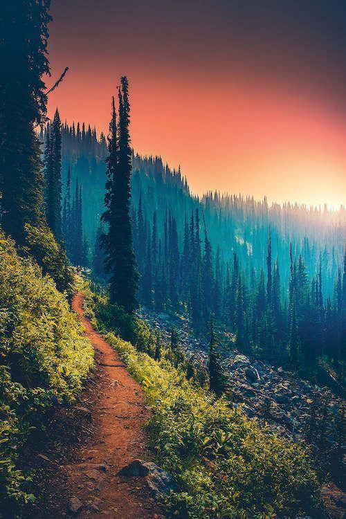 Landscape Photography Colorful Landscapephotographytips In 2020 Nature Photography Landscape Photography Nature Pictures