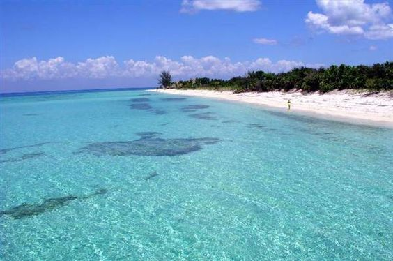 Without a doubt, Cozumel, Mexico had the most beautiful beaches I have ever been to. I could look at this water every day and never tire of it!