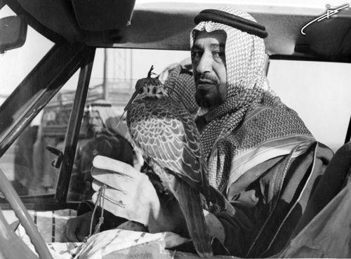 الملك خالد بن عبد العزيز آل سعود في المقناص Historical Figures Historical Art
