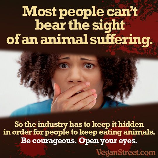 If only more people would open their eyes to animal abuse, cruelty and testing, we would live in a very different world.: