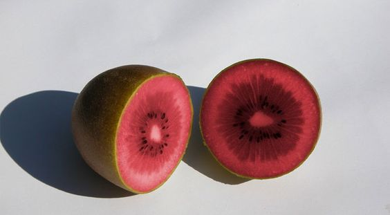 The kiwifruit, usually reduced to kiwi in several regions of the entire world, is definitely the delicious berry of the cultivar list of the woody vine Actinidia deliciosa as well as hybrids in bet…