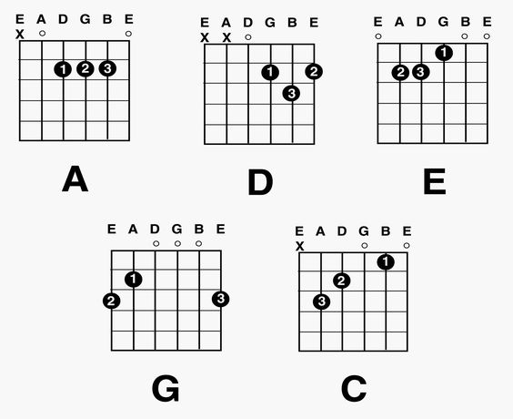 Guitar guitar chords for beginners acoustic : Guitar chords for beginners, Shape and Acoustic guitars on Pinterest
