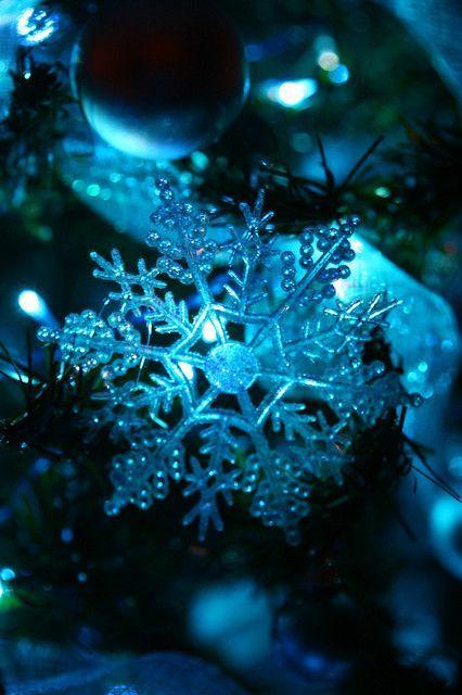 .Blue christmas
