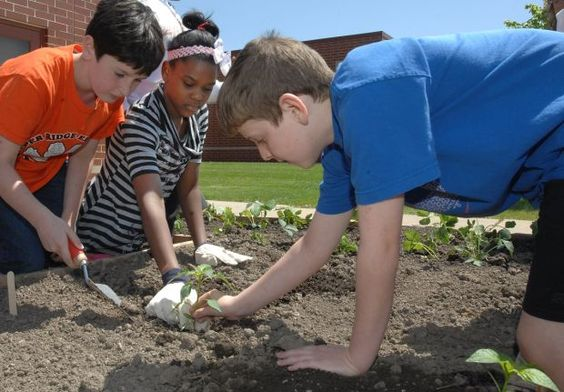 Pepper Ridge Elementary School Planted A Teaching Garden In Front Of The Building Read More