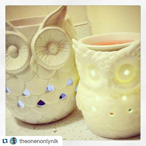 How cute are these! Need an electric #waxburner using too many tealights! #lbloggers #candles