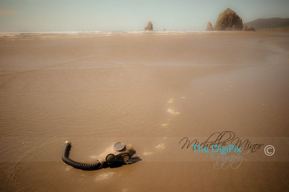 Cannon Beach Oregon, Photography by TheDigiPix.com #PHOTOGRAPHY