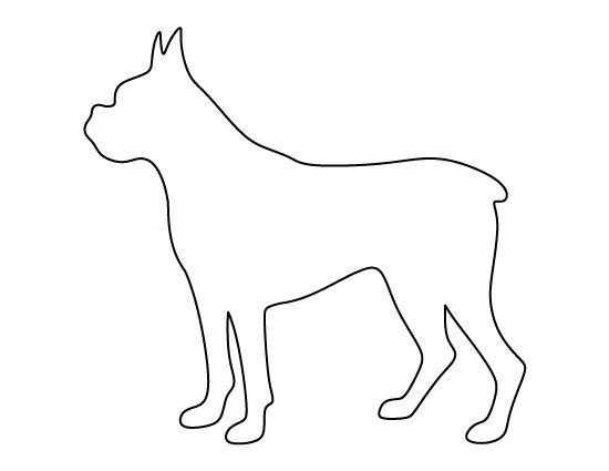 Dog face template