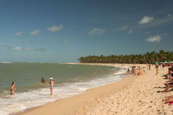 Costa dos Corais, Alagoas: É na Costa dos Corais que está localizada a segunda…