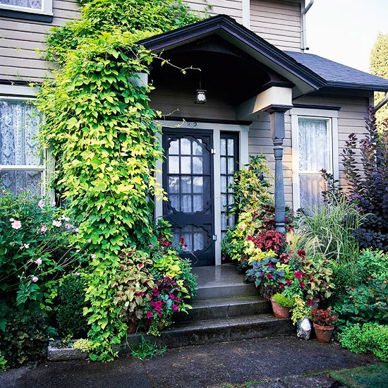 Container garden curb appeal and gardens on pinterest Container plant ideas front door