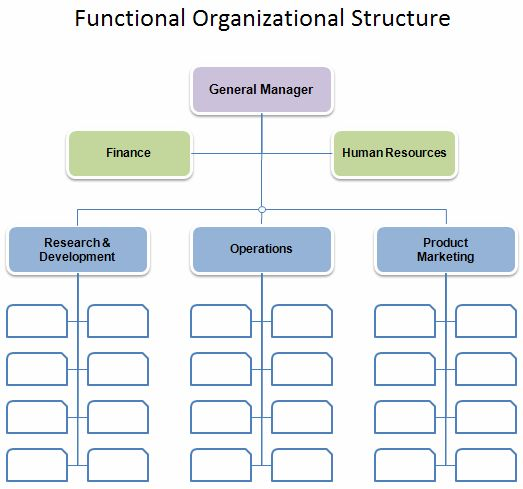 Flat Org Chart Template   Management   Typical Orgcharts