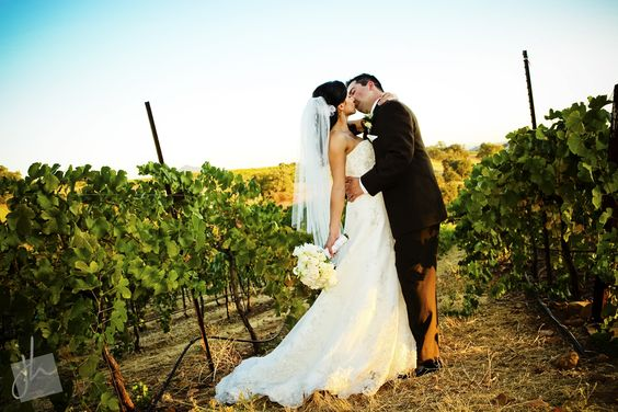 vineyard wedding - the vines have to be quite tall