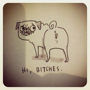 sketchbook pug even knowing this is a pug. Reminds me of hojo lol