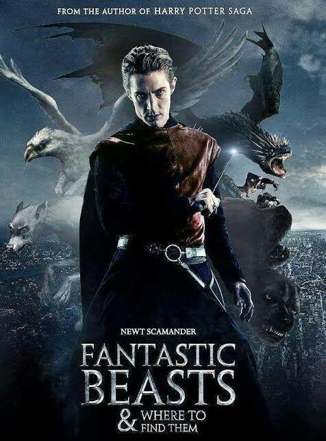Pin By Bentykhalid Bentykhalid On Series Drama Pakistani Turkish English Fantastic Beasts Movie Fantastic Beasts Harry Potter Fantastic Beasts