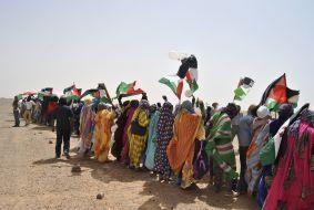 Publicaciones de interés pa'los Amiguetes del #SaharaOccidental
