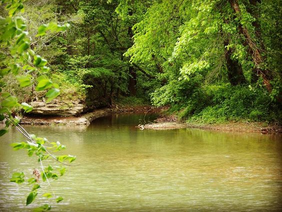 Took a little trip to Kentucky #kentuckycreeks