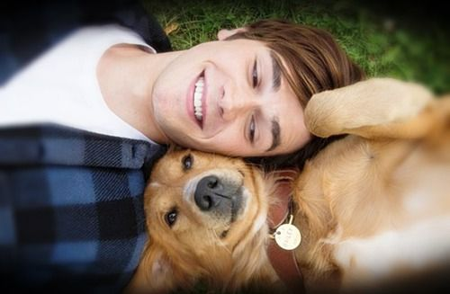 Movie A Dog S Purpose Dogs A Dogs Purpose Cute Puppies
