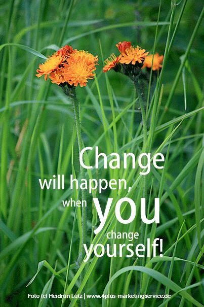 change yourself, sich ändern, der natur mehr raum geben, auch kleinen kann man etwas bewegen, orangerotes habischtskraut, zitat / © wildeschoenheiten.wordpress.com #habichtskraut, orangerotes