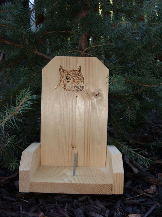 Wood Burned Squirrel Feeder- This is a decorative squirrel corn feeder with a woodburned image of a squirrel. This squirrel feeder is made out of pine. There is a small hole above the squirrel artwork on the front of the feeder that will allow a screw to attach the feeder to a tree.