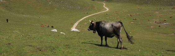 Conoce la ruta de montaña más vertiginosa de Cantabria 1ª Parte